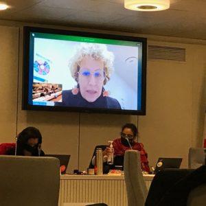 Vidéo de l'intervention d'Emilie Chalas sur le vœu de soutien de Groupe hospitalier mutualiste de Grenoble - Conseil métropolitain du 29/01/21